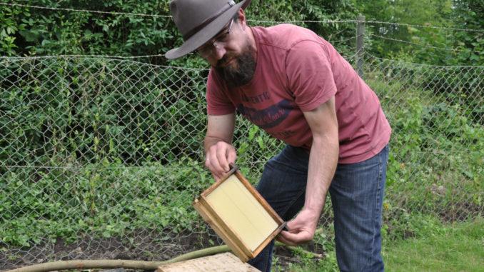 Bienenwabe Imkerei Kremer